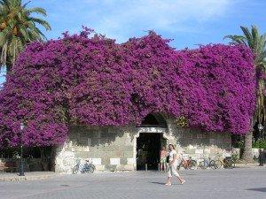 Das Blumentor